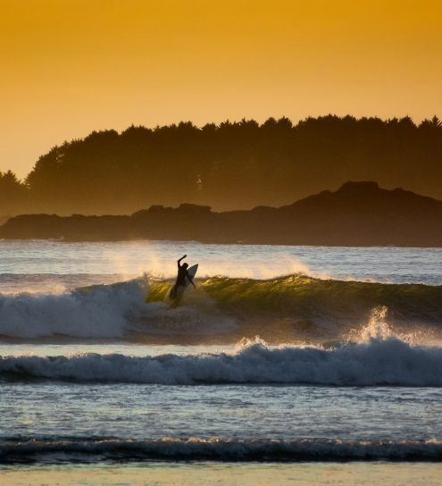 Surfer catching a wave at sunset